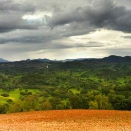 Entre Montellano y Coripe