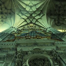 Organo catedral