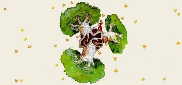 baobabs-principito
